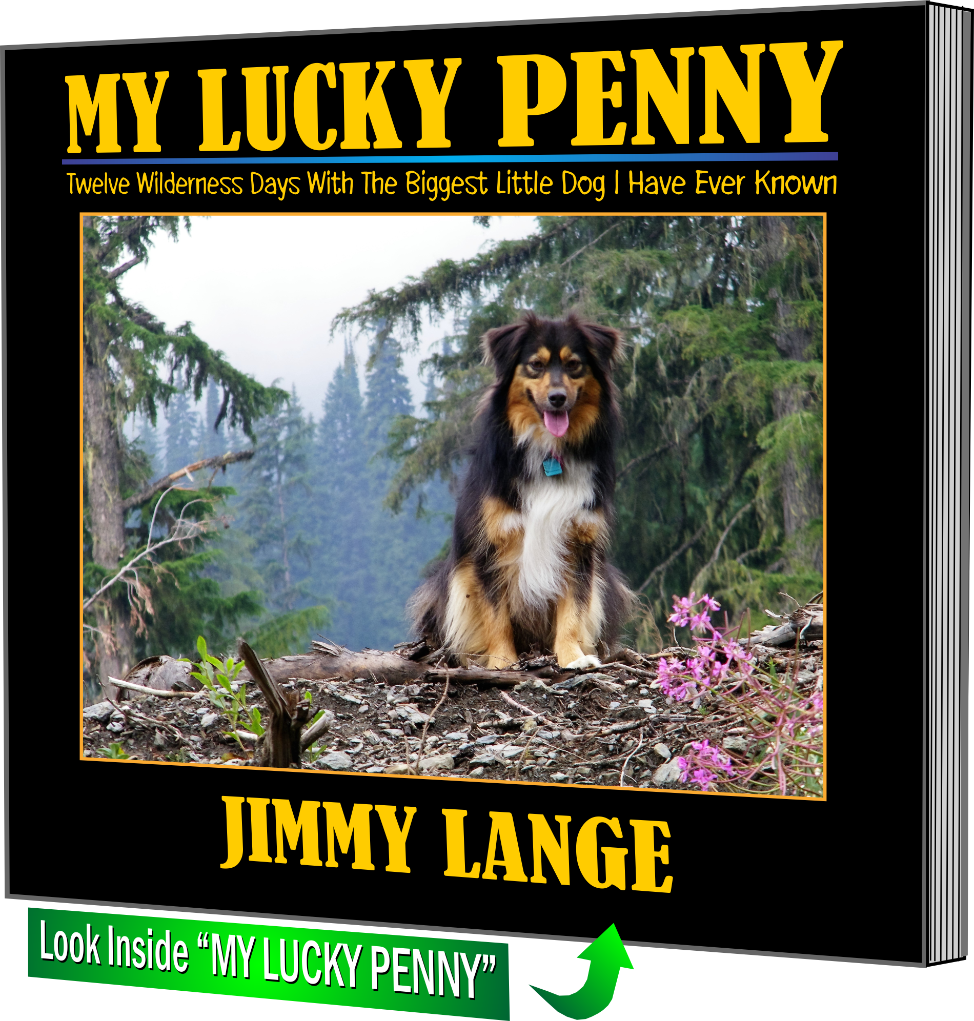Image of book cover - My Lucky Penny by Jimmy Lange
